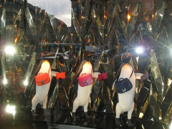 Dancing penguins in the display window
